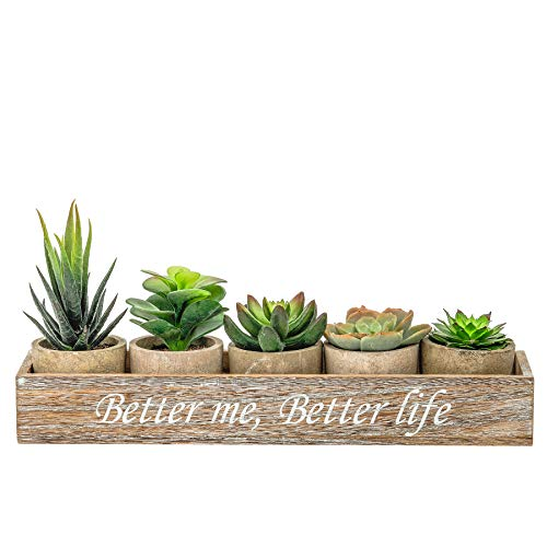 PENGYEE 5 Artificial Succulent Plants with Potted with Rustic Planter Box,Mini Succulents Artificial in Pots Small Artificial Plants Indoor for Home,Bookshelf, Kitchen Counter Decor