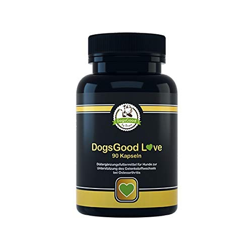 DogsGood Angebot! Gelenkkapseln für Hunde - das ideale Kombiprodukt, bei Osteoarthritis, Arthrose, Gelenkproblemen, mit MSM, Curcuma, Grünlippmuschel, Ingwerwurzel, Teufelskralle