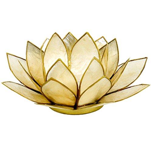 Lotuslicht beige/smoked
