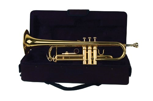 Palatino WI-815-TP B Flat Trumpet with Case