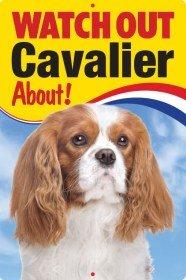 Pet/Dog 3D Linsenraster Flexible Schild ~ Watch Out 'Cavalier' (Blenheim) über.