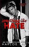 Something Like Hate: An Enemies-to-Lovers Billionaire Romance