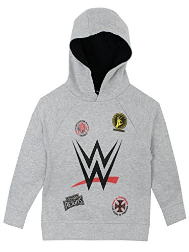 WWE Boys' World Wrestling Entertainment Hoodie Size 10 Gray