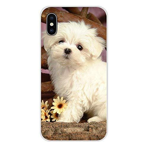 HUAI For Apple iPhone X XR XS 11Pro MAX 4S 5S 5C SE 6S 7 8 Incluyen un iPod 5 6 Cachorros de Perro maltés Blanco Cubiertas Transparente Shell TPU (Color : Images 9, Material : For iPhone 7 Plus)