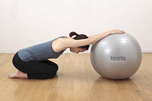 TANITA(タニタ)『タニタサイズジムボール(TS-952)』