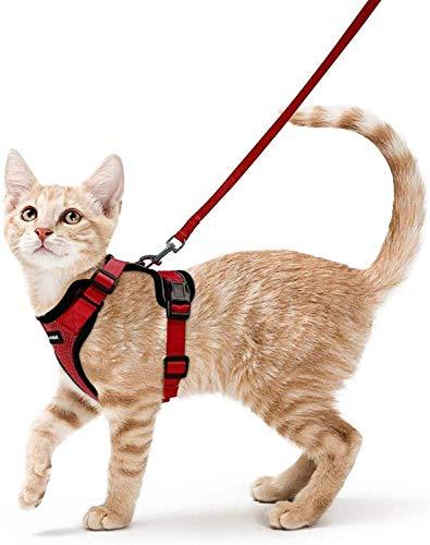 rabbitgoo Katzengeschirr mit Leine rotes Weichgeschirr für Katzenbrustgeschirre ausbruchsichere verstellbare Katzenweste, rot, XS