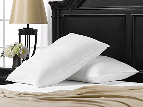 Ella Jayne Home Soft Queen Size Bed Pillows- 2 Pack White Hotel Pillows- Gel Fiber Filled Soft Gel Pillows with Hypoallergenic Classic Cover- Best Pillow for Stomach Sleepers