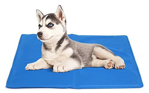 DZL Couverture rafraichissante pour chien et animal de compagnie 65 x 50 cm Réduit la température du corps