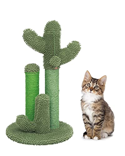 Poils bebe cat Scratching Post in Cactus Modelling, cat Scratcher with 3 Scratching Poles and 1 Dangling Ball, Special cat Furniture Design for Indoor Cats