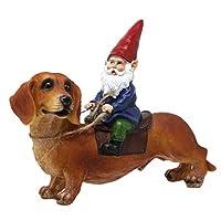 腊肠犬和花园侏儒雕像