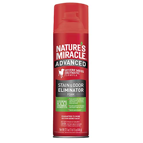 Nature's Miracle Advanced Stain and Odor Eliminator Foam Dog 17.5 Ounces, for Severe Dog Messes