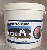 Peinture Toiture - 20 Kg (Gris Ardoise)