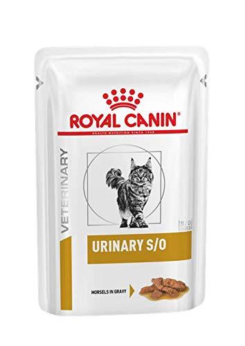ROYAL CANIN Dieta Gatto Urinary S/O bocconcini in Salsa 12 X 85 Gr