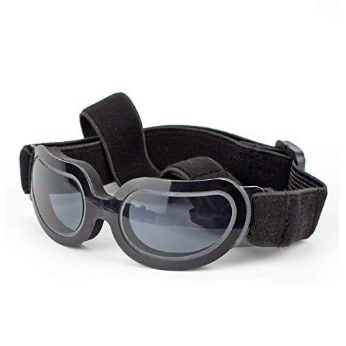 Petcute -   Hund Brille