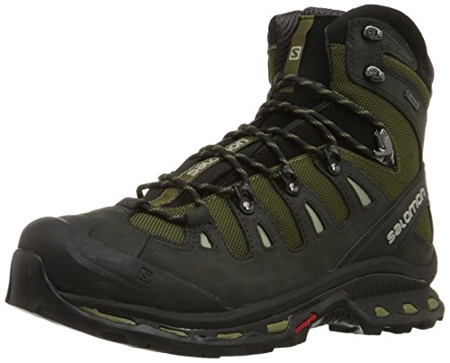 Salomon Men's Quest 4D 2 GTX Backpacking Boot, Iguana Green/Asphalt/Dark Titanium, 11 M US