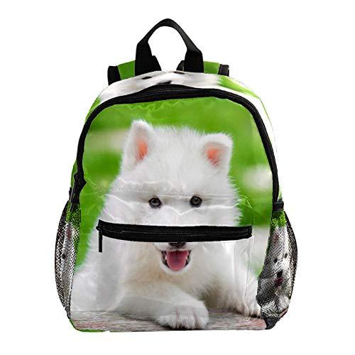 Linda Mochila Valla de Perro de Hierba Cute Student Backpack Design Mejor Mochila para niños Mochila Grande y Clara para Adolescentes Niñas Niños 25.4x10x30 CM