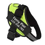 Ferry Pier Hundegeschirr mit Namen und Telefonnummer, robust, verhindert Zerren, Ziehen oder...