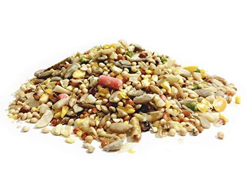 Pet Performance Garden Feast Wild Bird All Season Mix With Mealworms & Suet Pellets 12.55kg