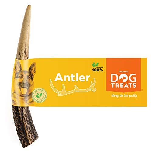 100% Naturale Corna di Cervo per Cani Masticare Ecologico Giocattolo Osso, Taglia Small