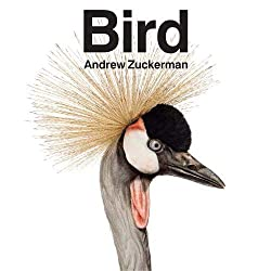 Bird by Andrew Zuckerman