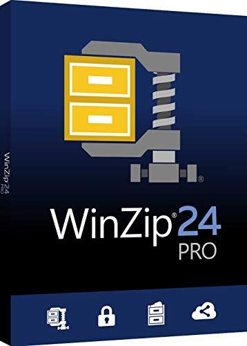 WinZip 24 Pro ML DVD 24 1 0 PC Disque