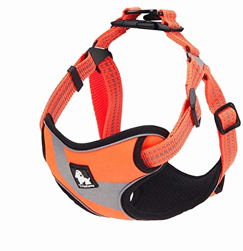 TRUE LOVE Dog Harness TLH5991 Anti Pull Safety Vest Step-in Style Harness for More Comfort and Less Tug Reflective Pet Harness by Truelove