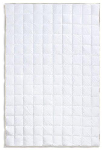Frau Holle Daunen-Bettdecke für den Sommer aus 100% Gänsedaunen, 135 x 200 cm, 200 g - 2212-11