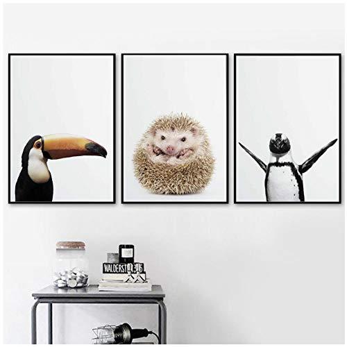 Leuke Papegaai Kikker Egel Pinguïn Vogel Nordic Posters En Prints Wall Art Canvas Schilderij Muur Foto Woonkamer Decor (50x70cmx3pcs geen frame)
