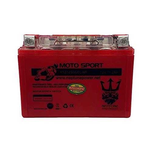 Neptune YTZ12S GEL 12V 11AH Battery for Honda 700 CTX700 2014