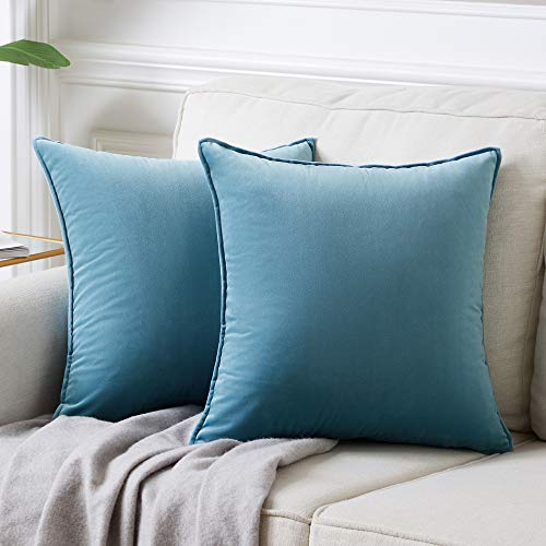 Andaot Pack of 2 Velvet Decorative Throw Pillow Covers 18x18 Inch for Couch, Soft Soild Square Cushion Case Set for Sofa Bedroom Car Outdoor Cushion Pillow Cases(Light Blue)