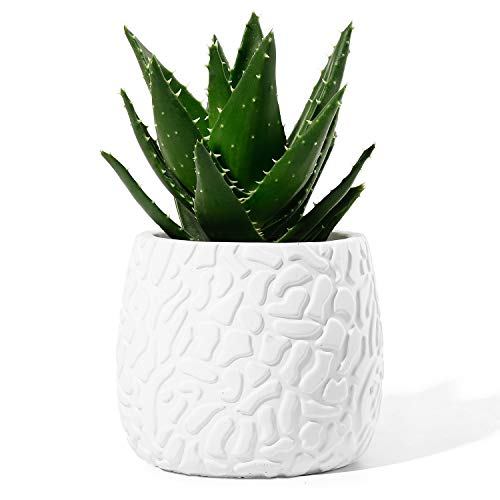 POTEY Cement Flower Pots for Plants - 4 Inches Medium Concrete Indoor Planter with Drainage Hole Modern Container Planting Bonsai Unglazed - White, Embossment 202021