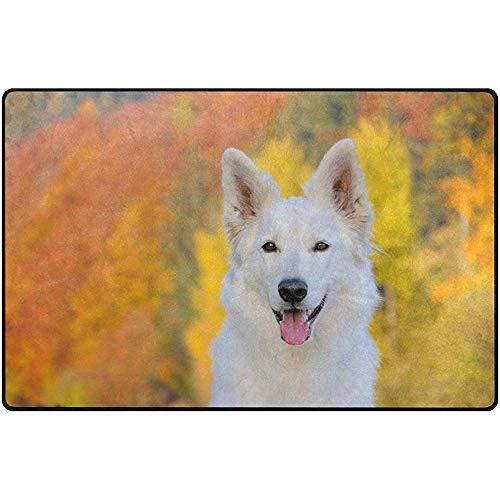 Fun-World Area Rug Leichte weiche Teppiche weißer Schweizer Schäferhund in Herbst-Bodenmatte für...
