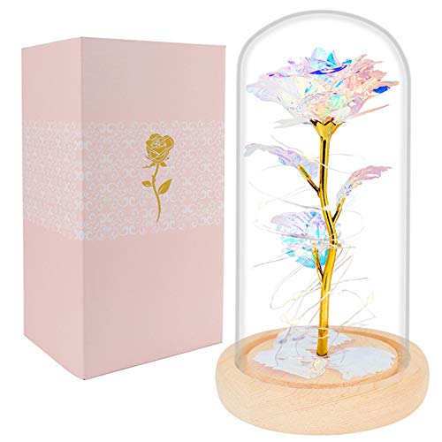 Christmas Rose Gifts for Women, Mom Gift Crystal Flower Led Light Galaxy Flower Forever Rose in Glass Dome Great Gift Idea for Valentine's Day, Thanksgiving Mother Gifts