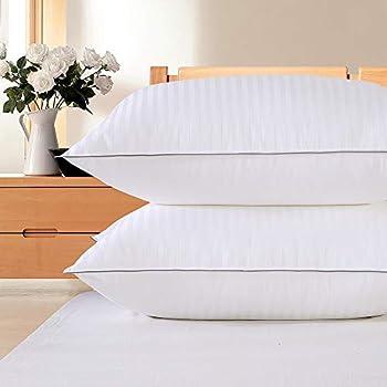 2-Pack Premium Plush Down Alternative Queen Size Pillow