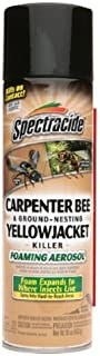 Spectracide Stinging Insects Killer (Carpenter Bee & Ground-Nesting Yellowjacket Killer, 16oz) (Pack of 6)