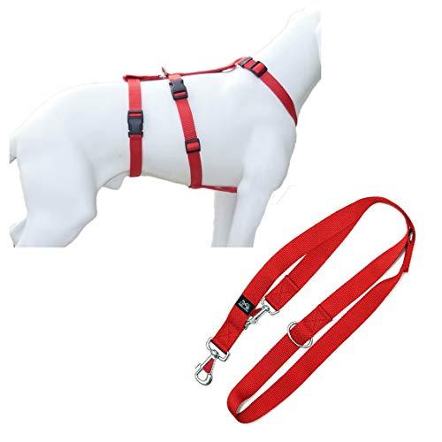 Feltmann NoExit Hundegeschirr®, mit passender Führleine 210 cm, 3-Fach verstellbar - ausbruchssicher, Panikgeschirr, Unifarben Rot, Bauchumfang 55-75 cm, 20 mm Bandbreite