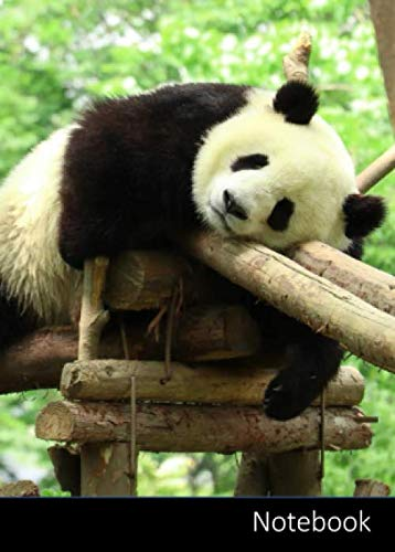 Notebook: Kleines Panda Notizbuch A6, kariert. Nachhaltig und klimaneutral.