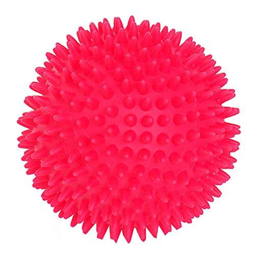 Rodite Hunde Spielzeug Ball Gummi Hunde Ball Haustier Quietscher Ball kleine Hunde Geräusch Gummi Robust Noppen Bälle Training Spielzeug Hundeball Outdoor Kauen Beissen