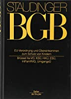 Vorbem A-h Zu Art 19 Egbgb: Internationale Abkommen Und Eu-verordnungen Zum Kindschaftsrecht