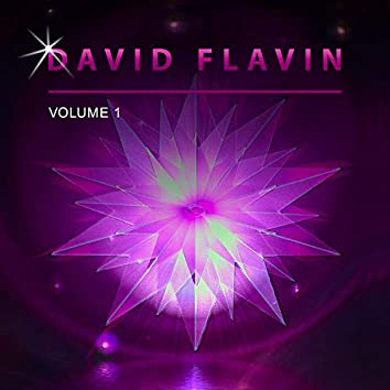 David Flavin, Vol. 1