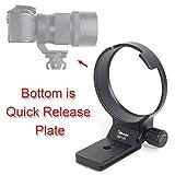 iShoot カメラリング式三脚座, シグマSigma 135mm f/1.8 DG HSM Art LensのCanon EF 240954、Nikon F 240955マウント用, レンズサポート襟、三脚マウントリングのボトムはクイックリリースプレート, ARCA-SWISS、PMG タイプの雲台、ボールヘッドを対応