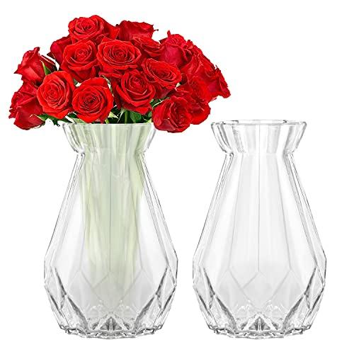 Belle Vous Jarrones Decorativos Modernos Cristal Transparente (Pack de 2) 15 cm - Florero Cristal Cilindro Decorativo - Set para el Hogar, Centro de Mesa y Decoración en la Oficina 🔥