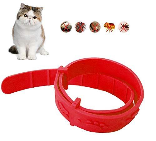 Hpybest 1 st huisdier kat vlooienkraag verstelbare kraag tegen anti-tik snel doden verwijderen huisdier beschermen Repel rubber ketting kat benodigdheden