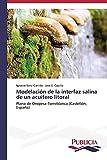 Modelación de la interfaz salina de un acuífero litoral