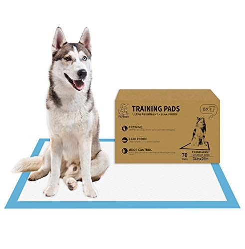 Dog Pads Instructions