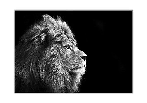 STYLER GL104 Glasbild, Glas, schwarz, 0.4 x 100 x 70 cm