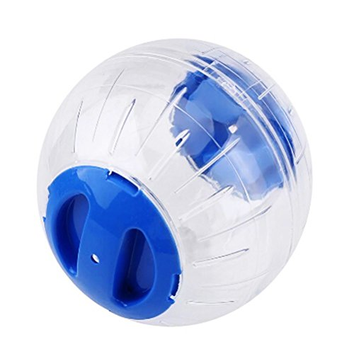 POPETPOP Hamster Laufball Hamster Laufen Ball Spielzeug für Nager Kleintier (Blau)
