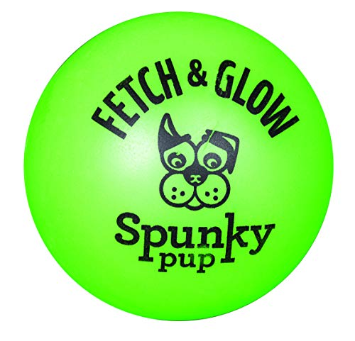 Fetch & Glow Ball Large