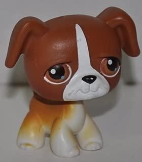 Best littlest pet shop toys 2004 Reviews