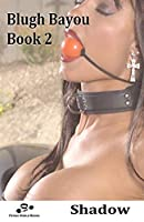 Blugh Bayou - Book 2